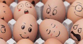 กินไข่ต้มแล้ว จะช่วยลดความอ้วนได้อย่างไร